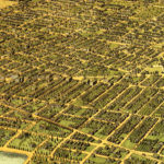 Vintage Map of Oakland, California 1900