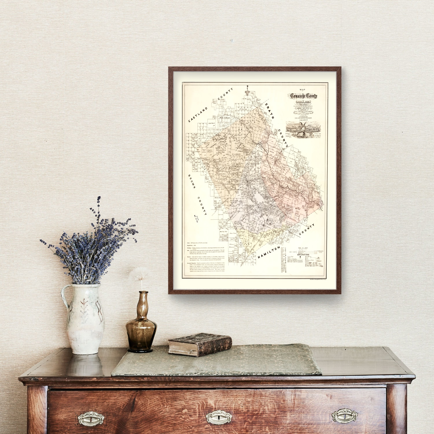Vintage Map of Comanche County, Texas 1876