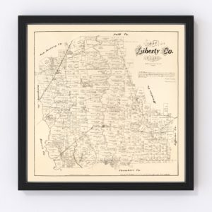 Vintage Map of Liberty County, Texas 1879