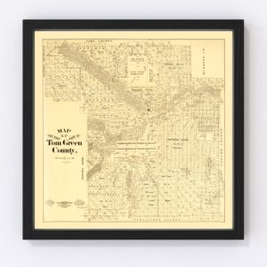 Vintage Map of Tom Green County, Texas 1893