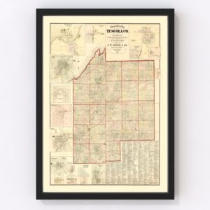 Vintage Map of Tuscola County, Michigan 1875