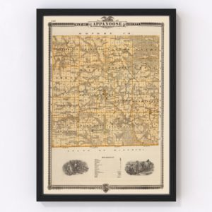 Vintage Map of Appanoose County Iowa, 1875