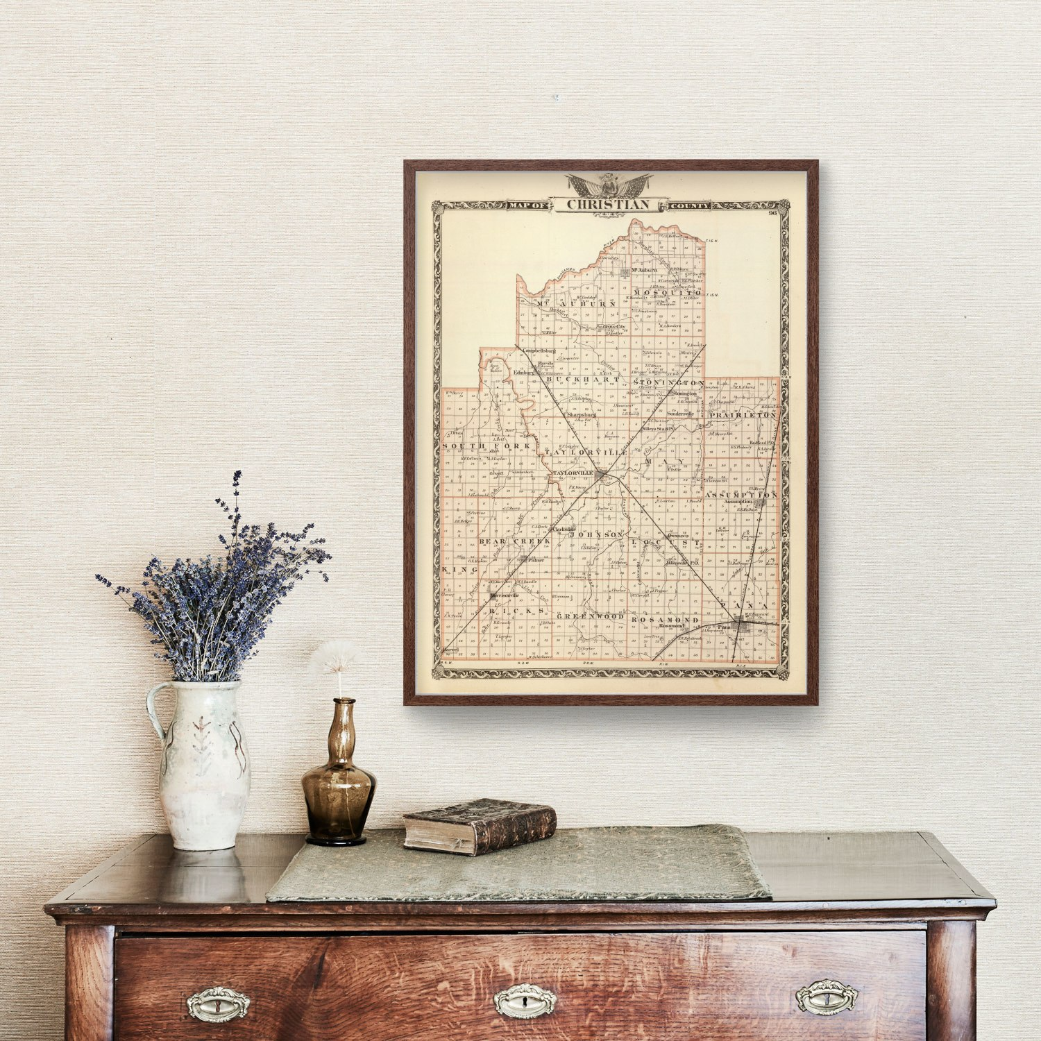Vintage Map of Christian County Illinois, 1876