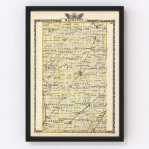 Vintage Map of Macoupin County Illinois, 1876