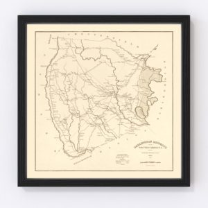 Vintage Map of Darlington County, South Carolina 1825
